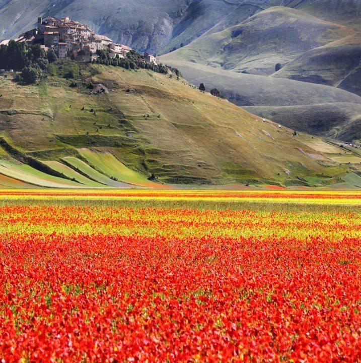 tour UMBRIA: Gubbio Spoleto Cascia Norcia Assisi  — 4 giorni – € 380- mezza pensione